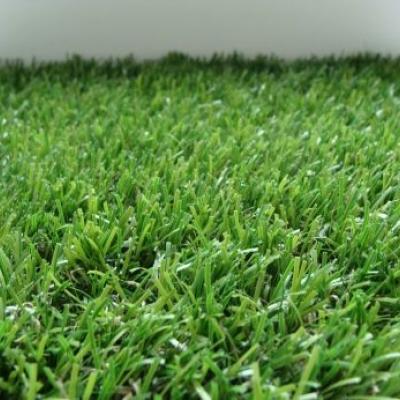 Декоративная трава 370 QUEEN