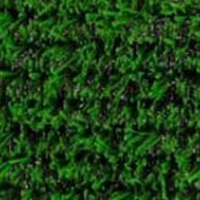 Декоративная трава 150 ROYAL