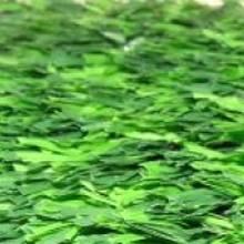 Искусственная трава для мини-футбола - DUOGRASS 25
