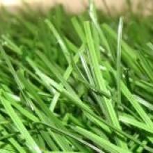Искусственная трава для мини-футбола - V-POWER GRASS 40