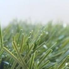 Искусственная трава для мини-футбола - 420 CHAMPIONS