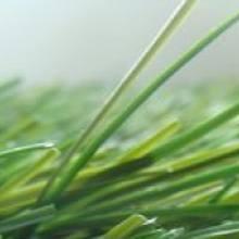 "Искусственная трава для мини-футбола - 420 EXCELLENCE EVO ""L"""