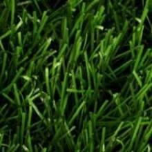 Искусственная трава для футбола - KickStart 50/8