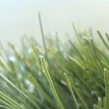 Искусственная трава для футбола - 520 CHAMPIONS
