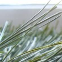 Искусственная трава для футбола - 620 CHAMPIONS