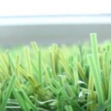 Декоративная трава 320 DREAM